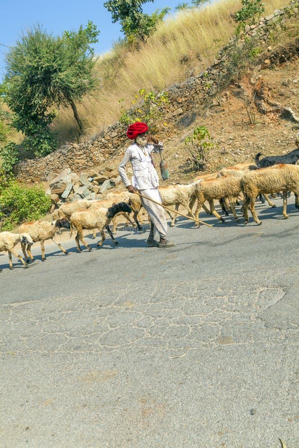 Rajasthani plemienny koziarz zdjęcie royalty free