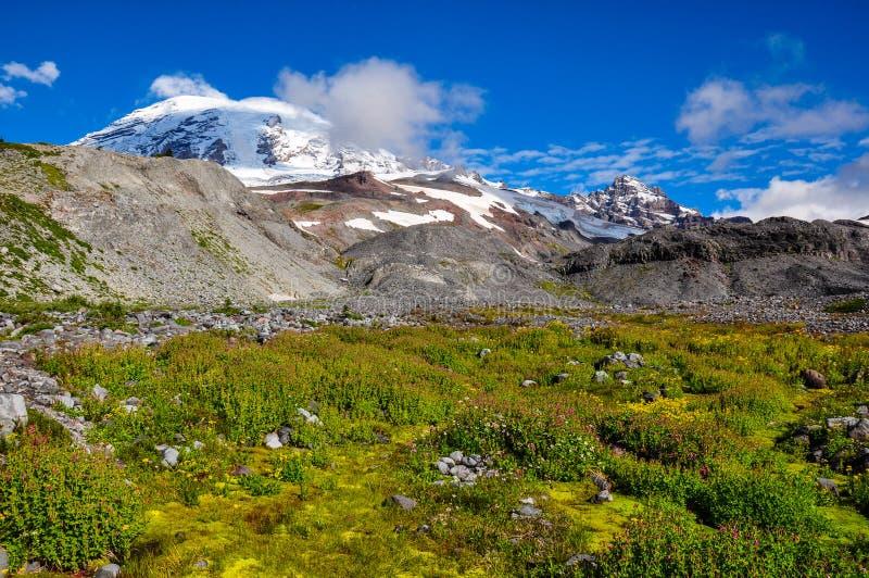 Raju ślad w góra Dżdżystym parku narodowym, Waszyngton, usa zdjęcia royalty free