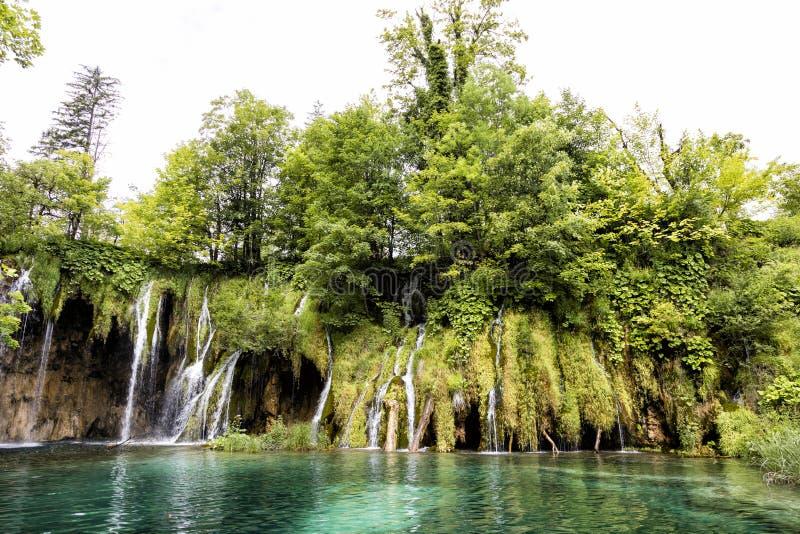 Raju krajobraz z siklawami płynie w staw obraz royalty free