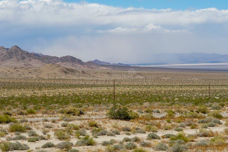 Rak väg nästa Joshua Tree Park för ändlös öken arkivfoto