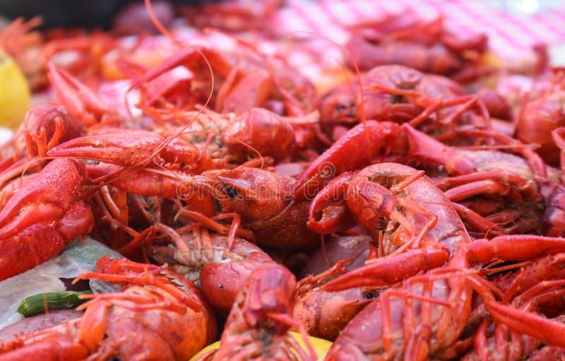 Raka czyrak - gotujący warzywa i owoce morza wypiętrzaliśmy na czerwonym i biel sprawdzał tablecloth fotografia royalty free