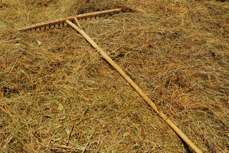 Download Rake stock photo. Image of tool, farm, countryside, agriculture - 18830226