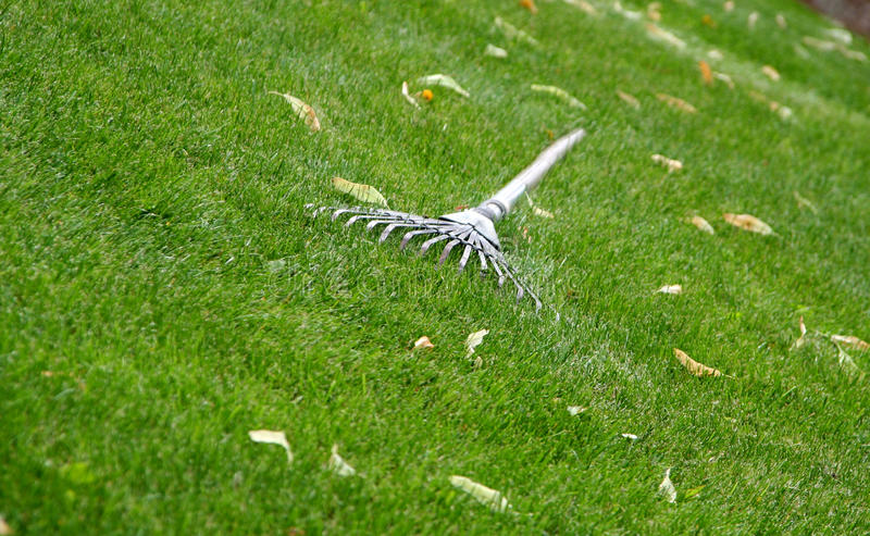 Rake on the grass royalty free stock photography