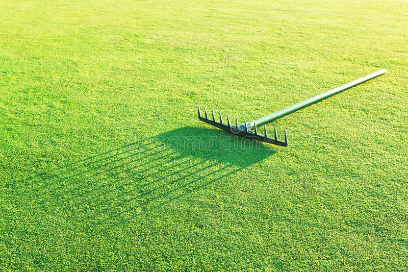 Rake on the green grass for golf. royalty free stock images