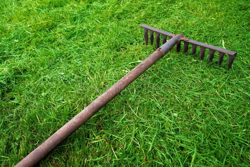 Rakes on the green grass royalty free stock images