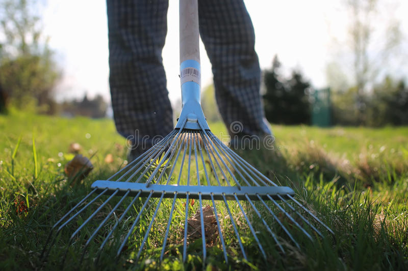 Rakes to collect old grass stock photography