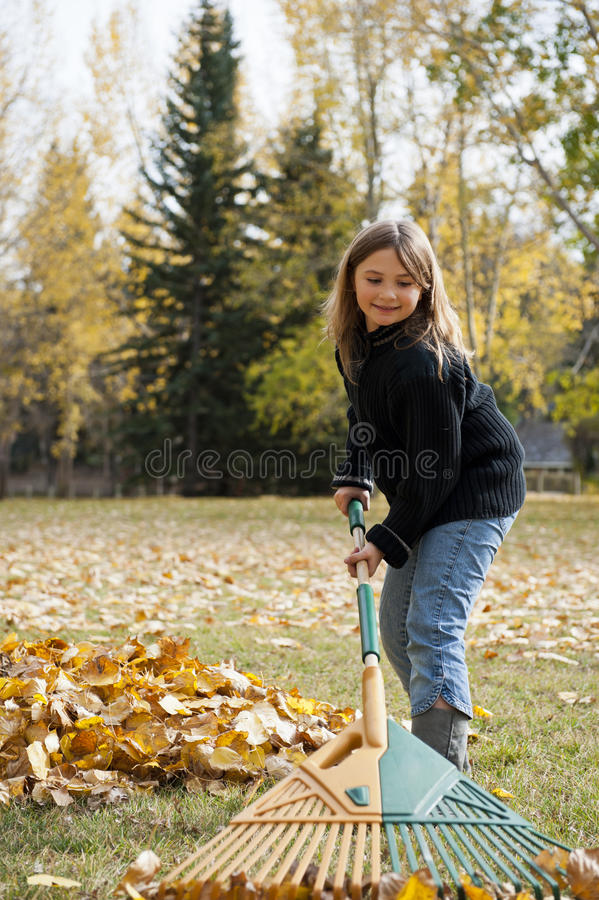 Raking Leaves royalty free stock photography