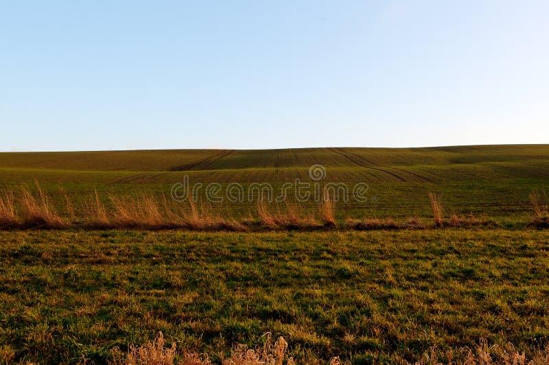 Field, raking light evening sun, countryside Dinant, Belgium stock photography