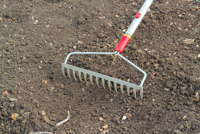 Raking soil for seed sowing. stock photo
