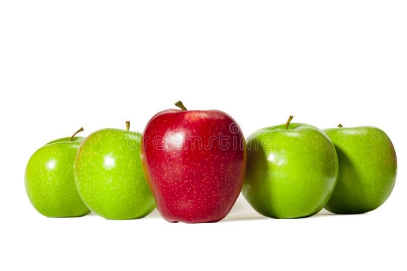 Raksträcka på skott av en stora röda Apple som framme står högväxt av fyra gröna äpplen royaltyfri foto