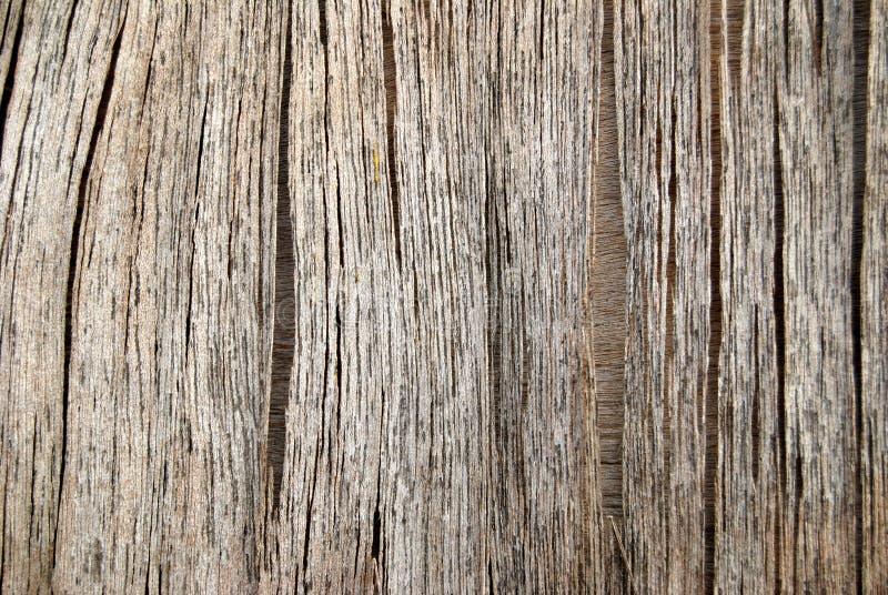 rakt trä för fläckar arkivbild