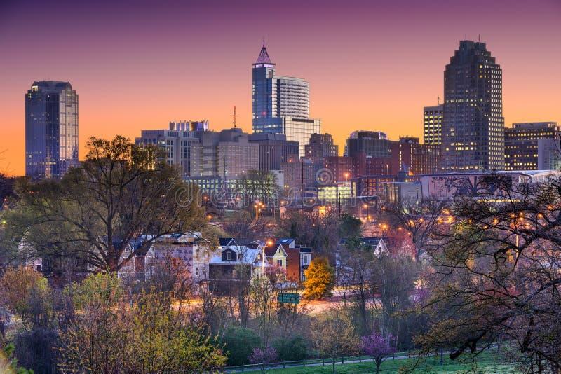 Raleigh North Carolina Skyline immagine stock