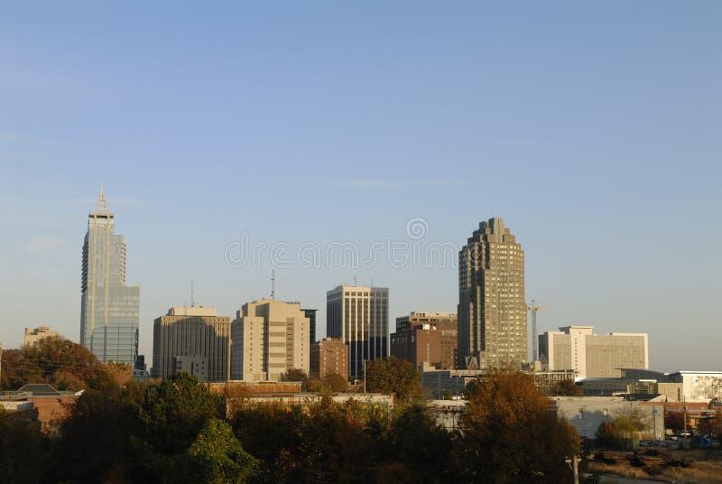 Raleigh-North Carolina-Stadt-Skyline lizenzfreie stockfotografie
