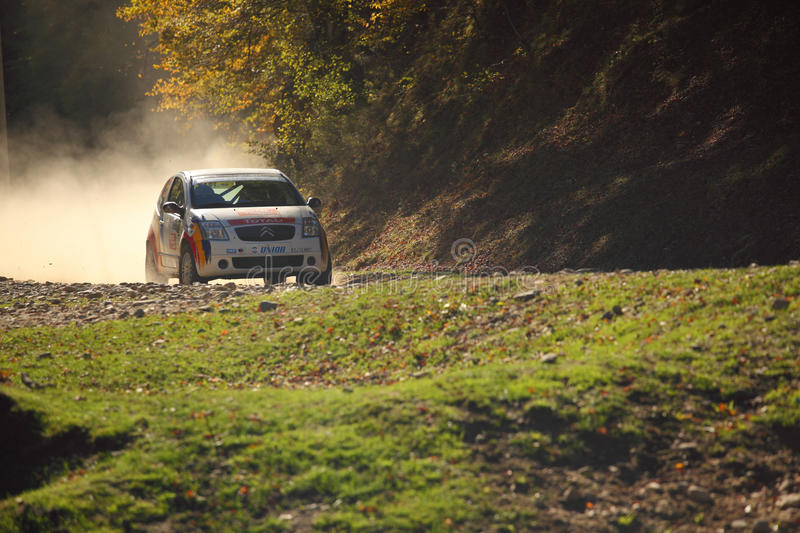 Download Rally Car on gravel editorial stock photo. Image of forest - 27241848