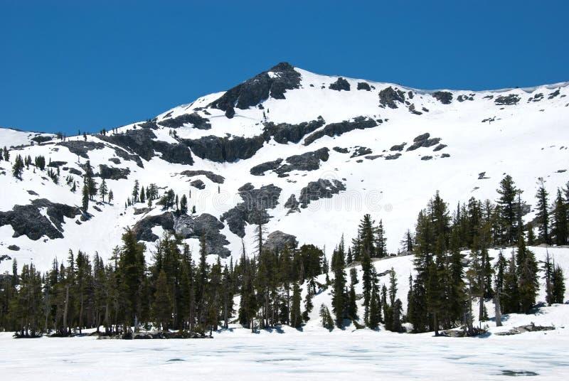 Ralston Spitze umfaßt im Schnee stockbild