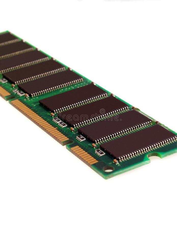 Ram stock fotografie