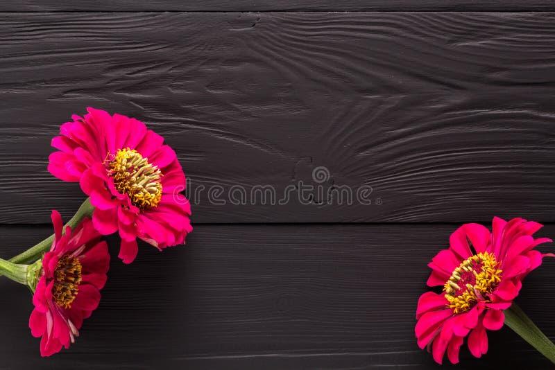 Ram av blommor, bakgrundssvartbräden royaltyfri fotografi
