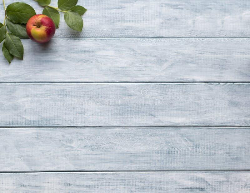 Ram av gröna sidor och äpplet på trätappningbräden kopiera avstånd royaltyfri foto