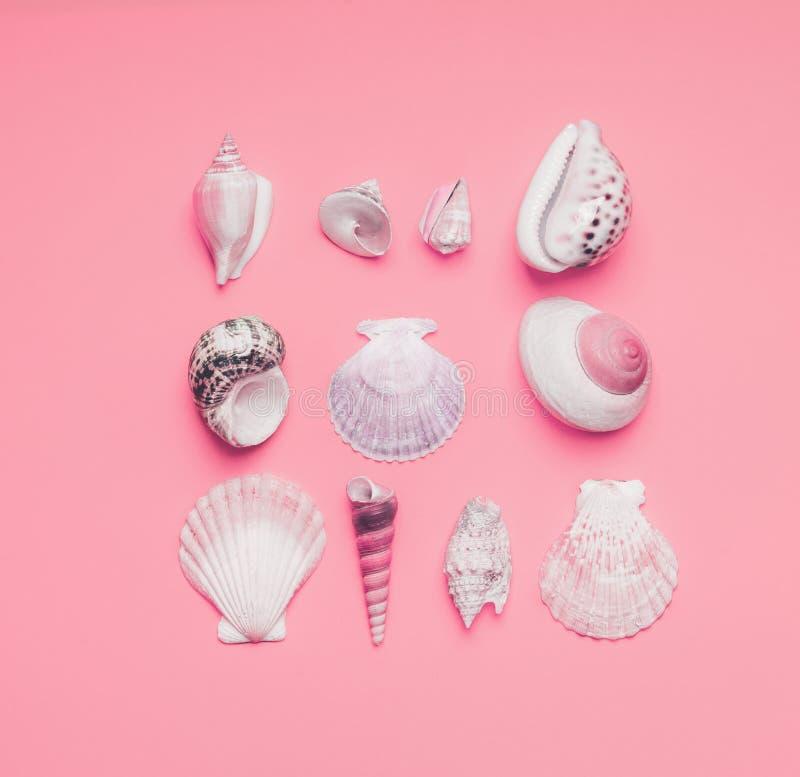 Ram av havsskal och tropiska sidor på pastellfärgad rosa bakgrund, bästa sikt Id?rik orientering Lekmanna- l?genhet sommar f?r sn arkivfoto