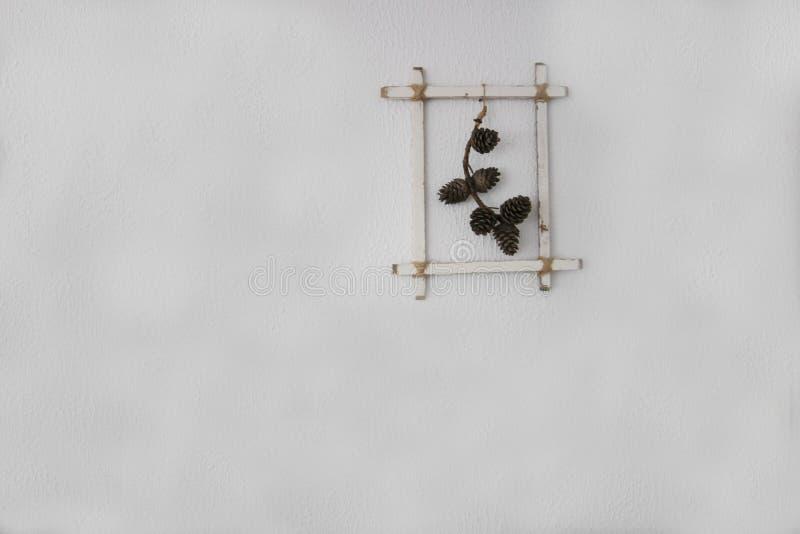 Ram av kottar i vit bakgrund arkivbilder