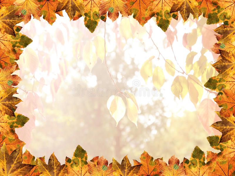 Ram av lönnlöv, höstliga färger royaltyfri illustrationer