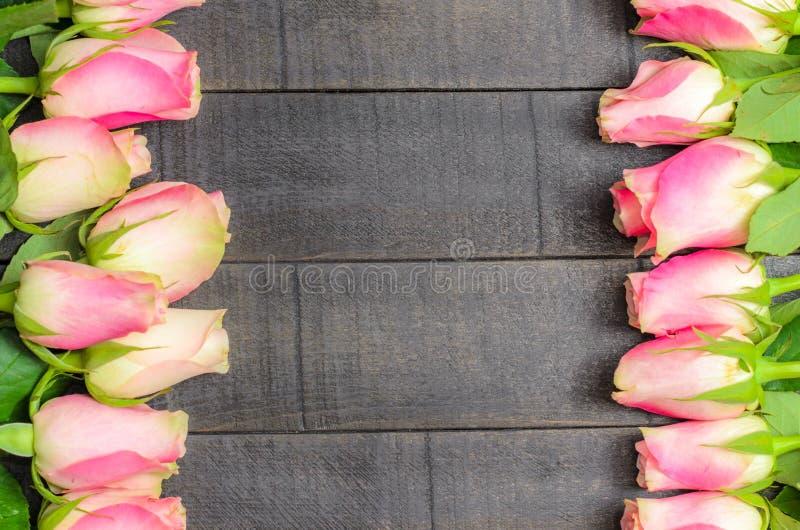 Ram av rosa rosor på mörk träbakgrund arkivbild