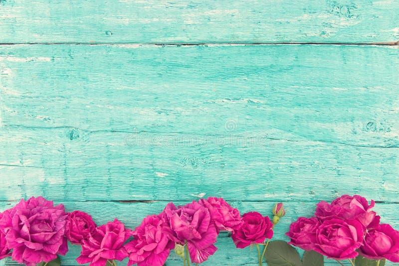 Ram av rosor på lantlig träbakgrund för turkos Vårflo royaltyfri fotografi