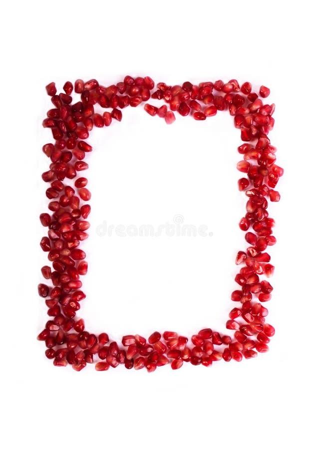 Ram av spritt rött granatäpplefruktfrö royaltyfri bild
