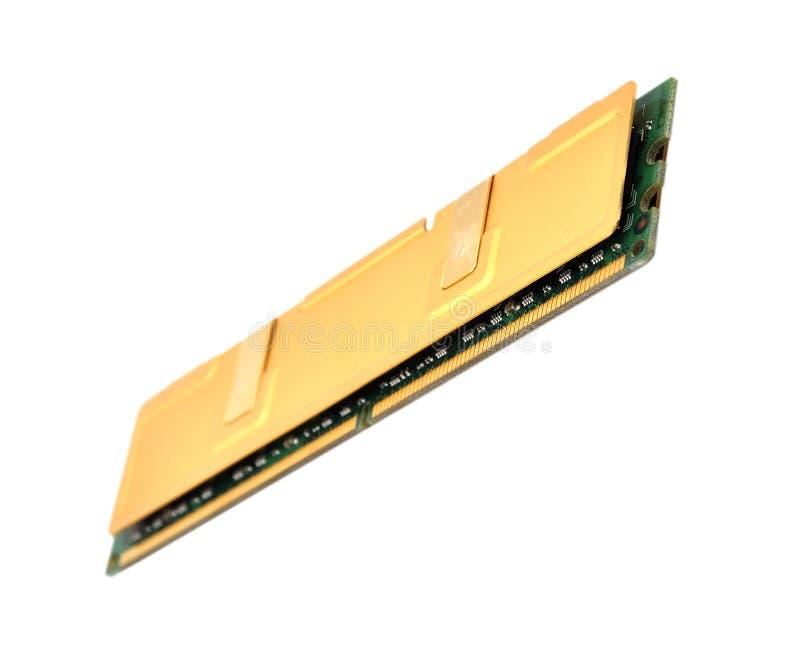 RAM del oro foto de archivo libre de regalías