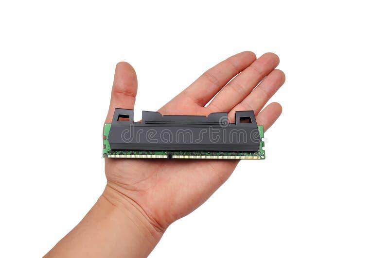 RAM in der Hand stockbild