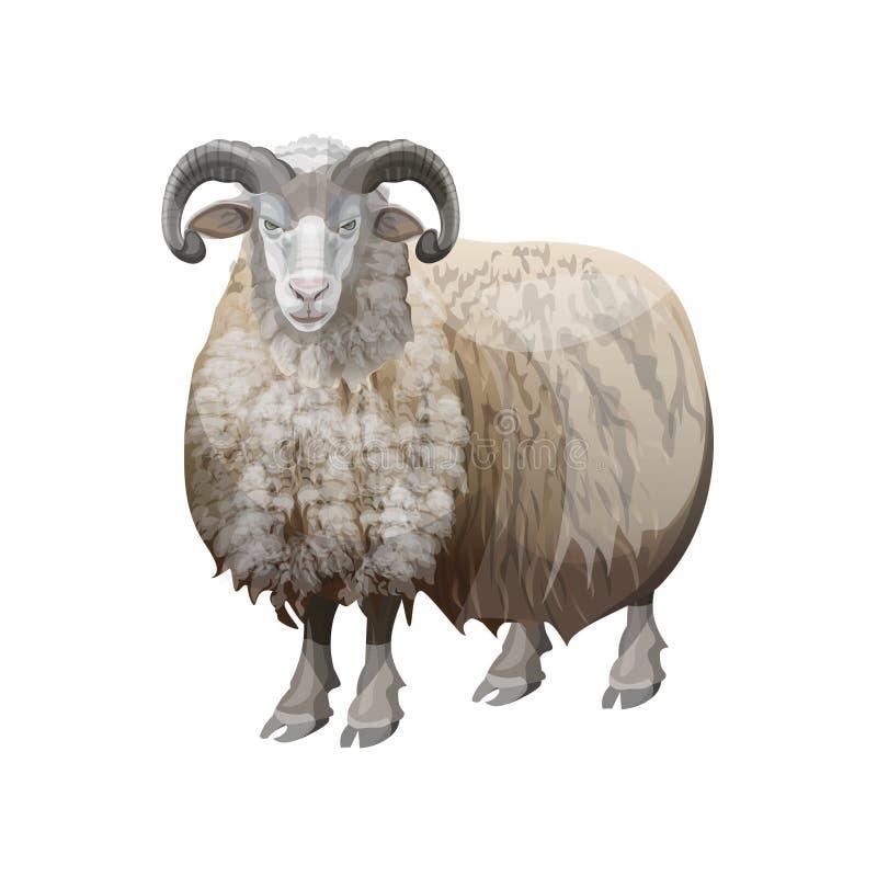 Ram domestica stante royalty illustrazione gratis