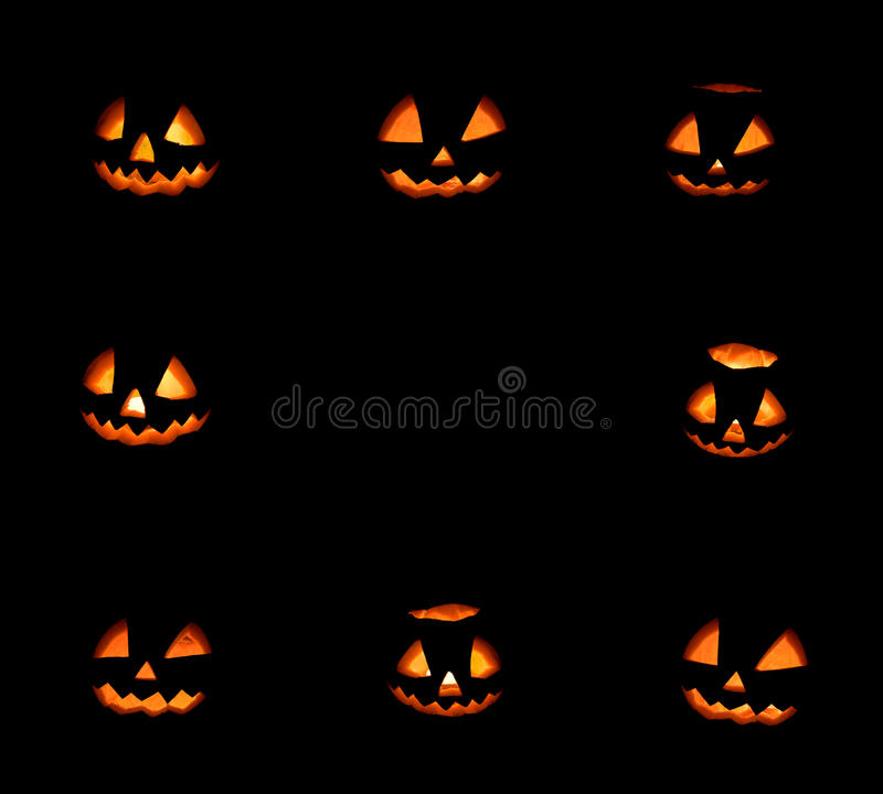 Ram för åtta halloween pumpor på svart fotografering för bildbyråer