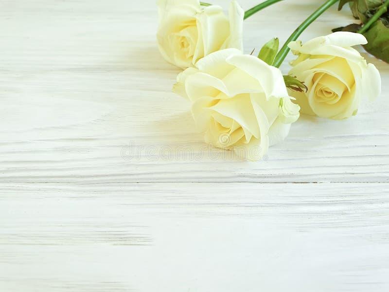 Ram för bakgrund för härlig rosborderon vit trä arkivfoto
