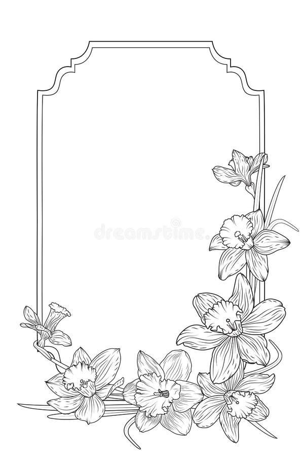 Ram för gräns för pingstliljapåskliljavår blom- royaltyfri illustrationer