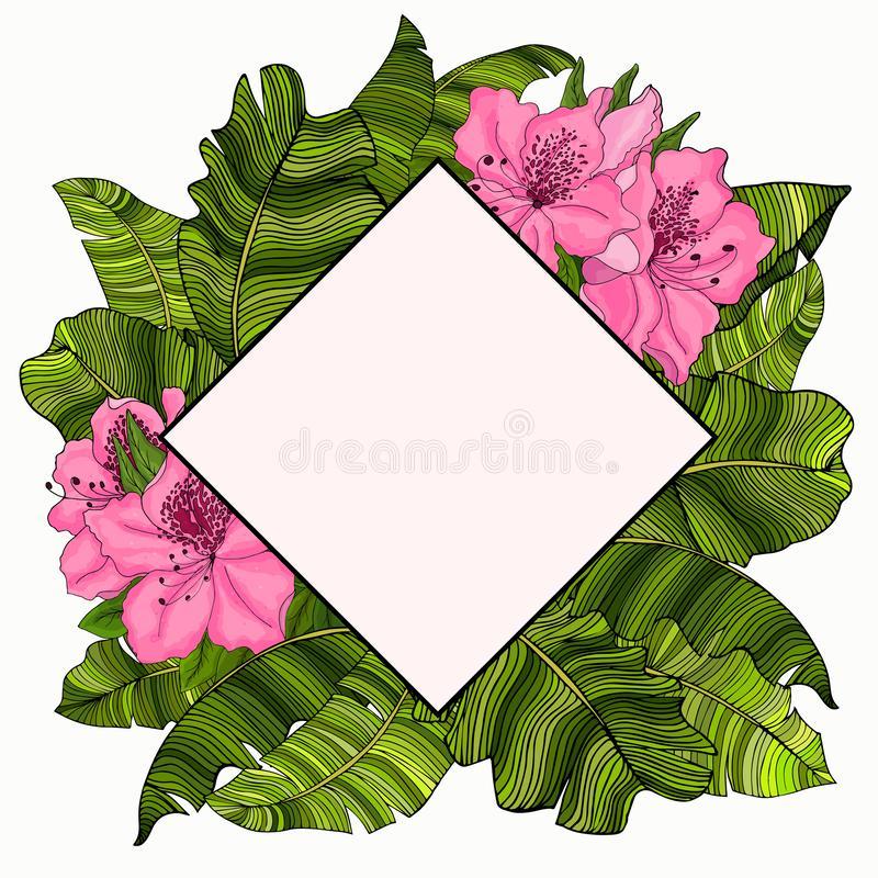 Ram för text i designen av defärgade gröna sidorna av ett bananträd och de rosa azaleablommorna royaltyfri illustrationer