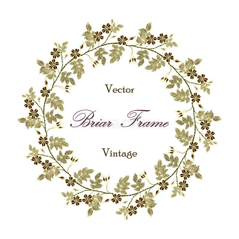 Ram för vektortappningäppelros royaltyfri illustrationer