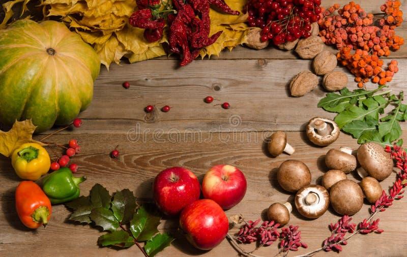 Ram från grönsaker, muttrar, bär och frukter royaltyfri fotografi