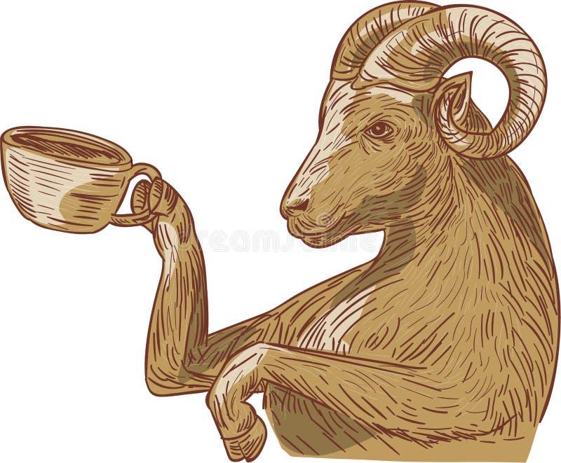 Ram Goat Drinking Coffee Drawing stock de ilustración