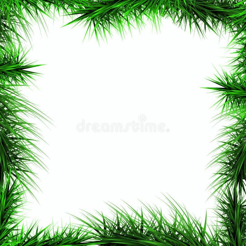 Ram gräsplanfilialer av en julgran på vita lodisar royaltyfri bild