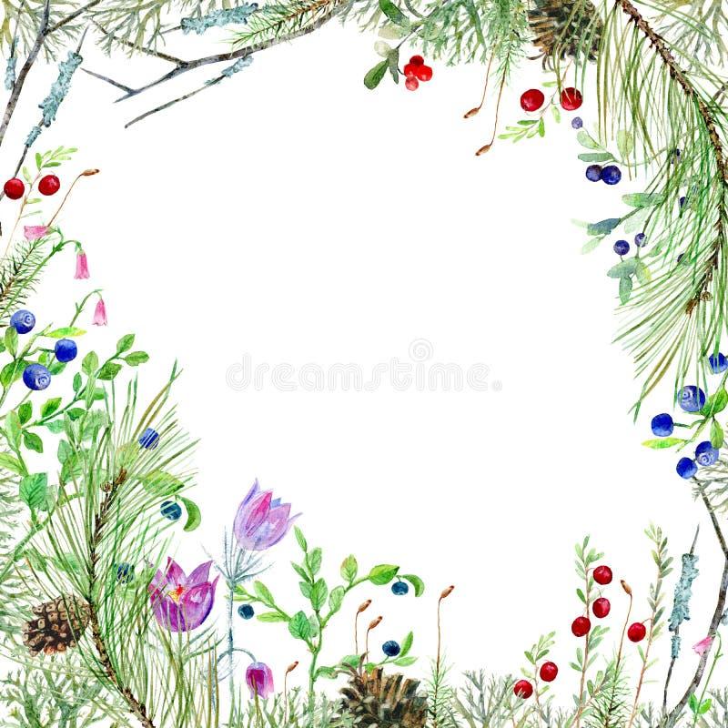 Ram med pinjeskogflora royaltyfri illustrationer