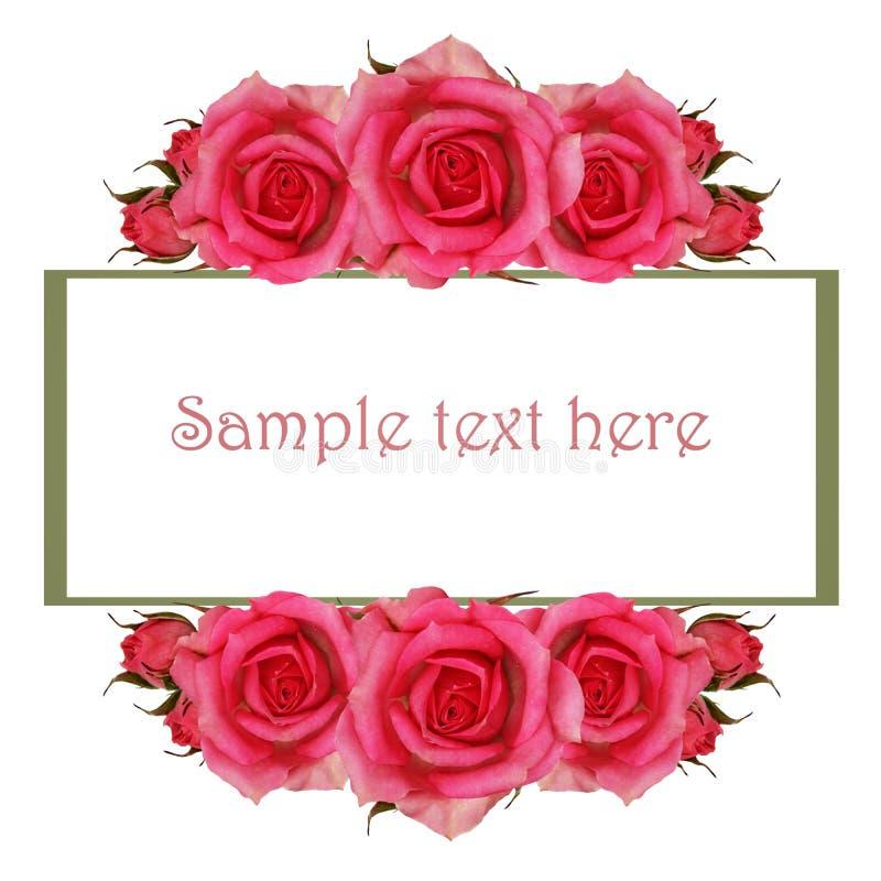 Ram med rosa färgrosblommor vektor illustrationer
