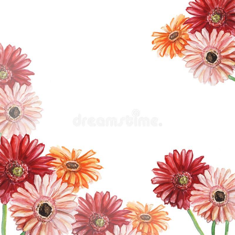 Ram med rosa, röda och orange gerberas f?r flygillustration f?r n?bb dekorativ bild dess paper stycksvalavattenf?rg stock illustrationer
