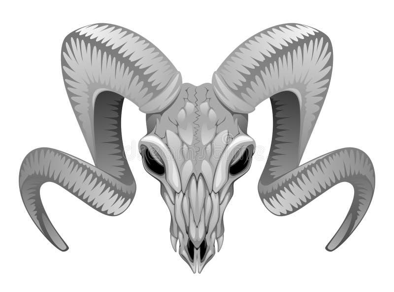 Ram Skull stock de ilustración