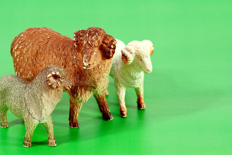 Ram-toy. Toy rams standing on an artificial green meadow royalty free stock photo