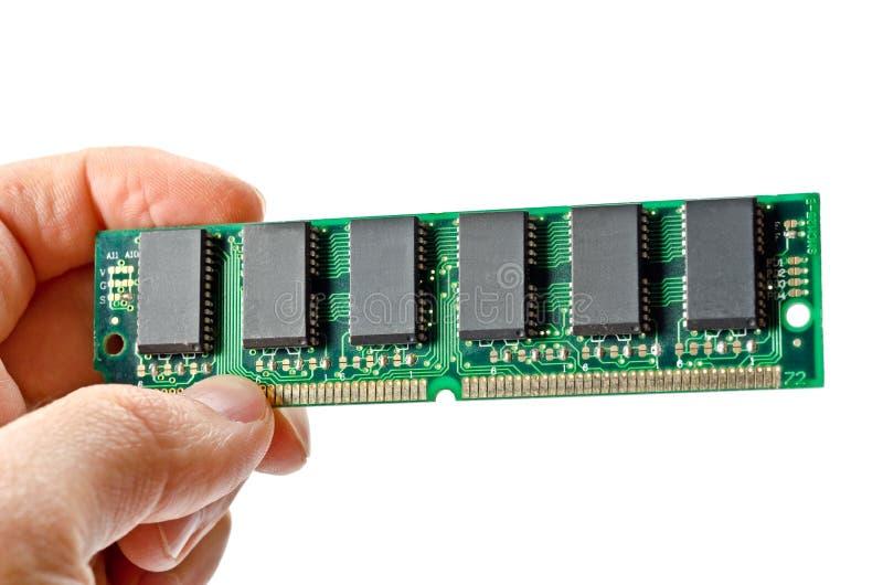 RAM verde imagen de archivo libre de regalías