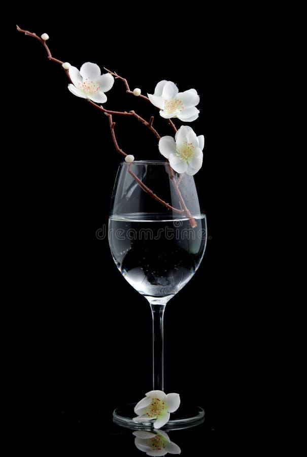 Rama artificial de la cereza en vidrio de agua foto de archivo