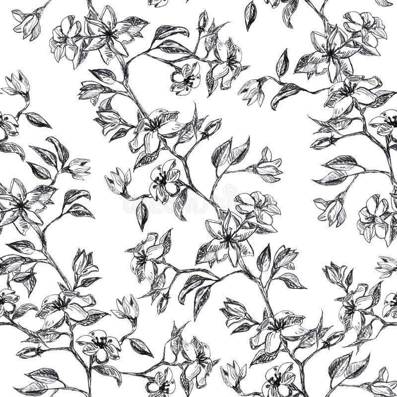 Rama con las flores y las hojas, mano gráfica dibujada - modelo inconsútil con el árbol del flor de la manzana en blanco stock de ilustración