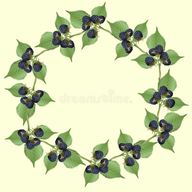 Rama czernica z zielonymi liśćmi ilustracji