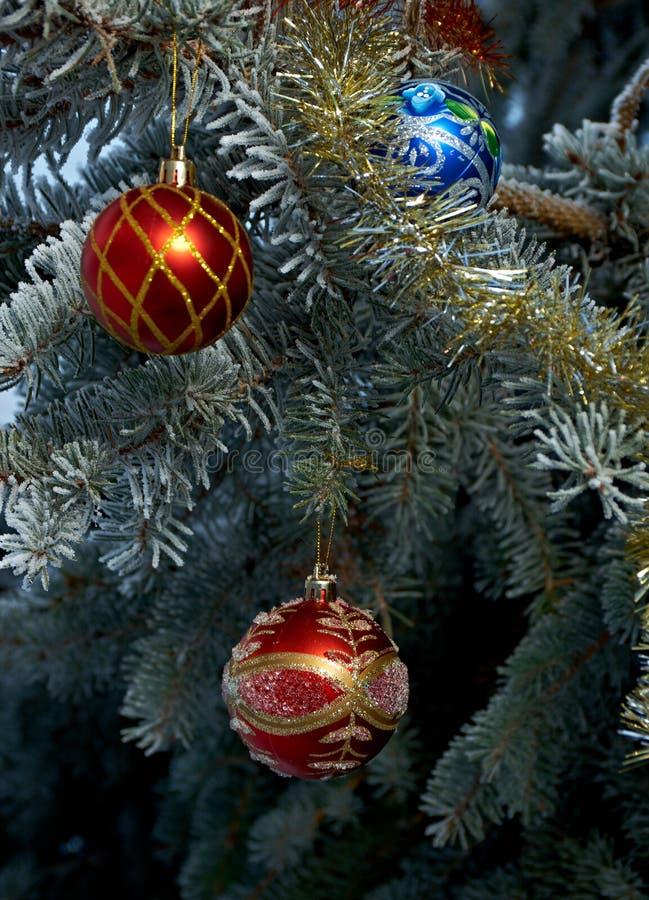 Rama de árbol de navidad fotografía de archivo libre de regalías
