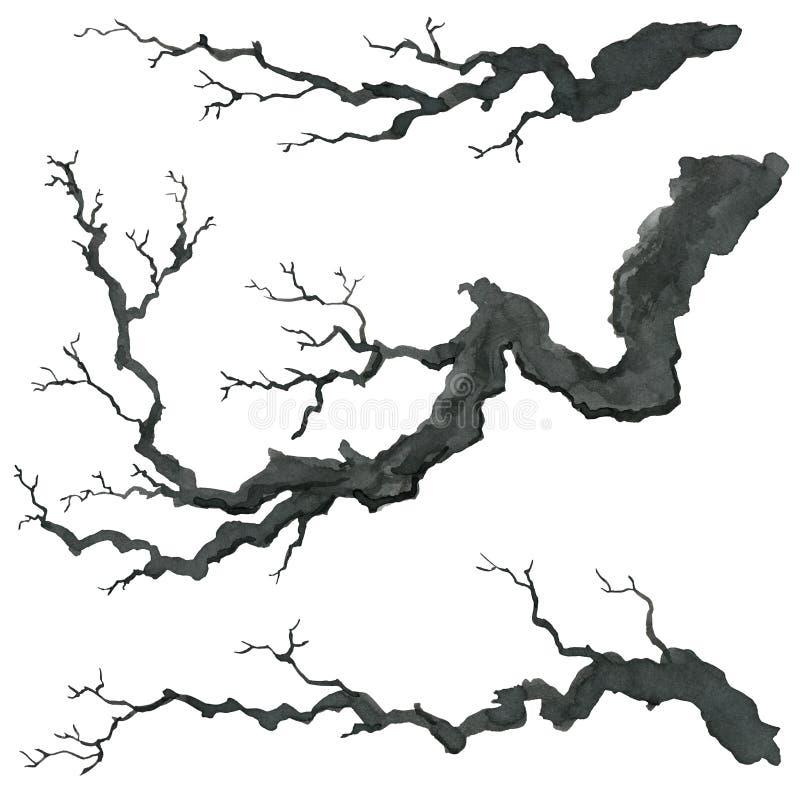 Rama de árbol en estilo japonés Ejemplo de la pintura de la mano de la acuarela ilustración del vector